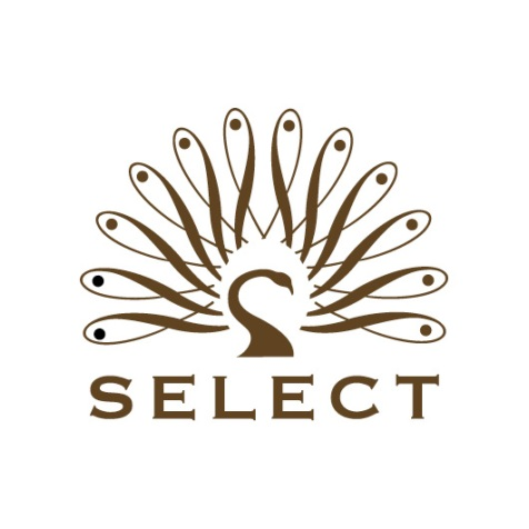 Logo-Select-Property